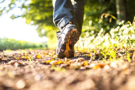 hiking shoes: Detail of man walking in woods.