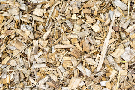 mulch: Wood chips background. Stock Photo