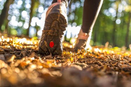 女性の足が美しい夏の日のハイキングのクローズ アップ。