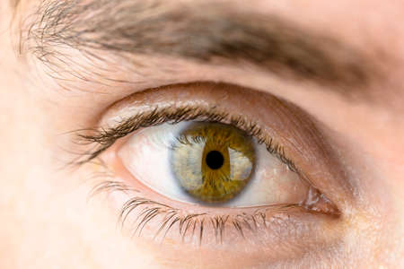 eyeball: Studio macro shot of mans eye. Stock Photo