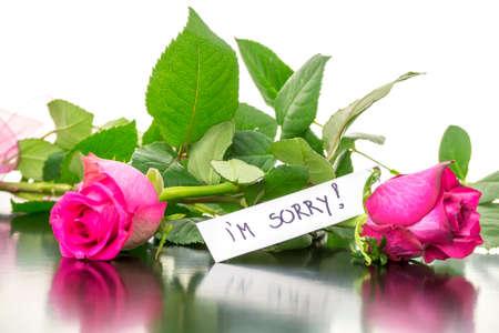 pardon: Deux belles roses roses avec un message Je suis désolé. Banque d'images