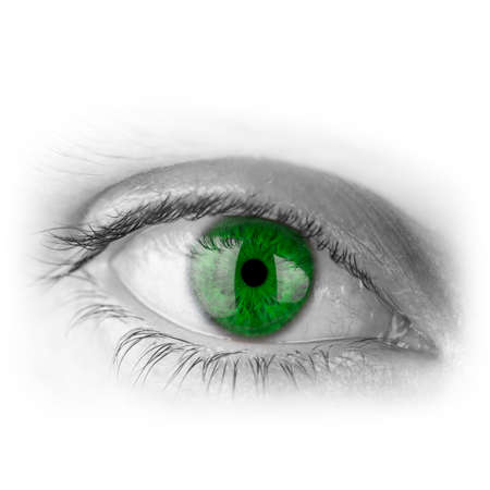 Closeup of human eye with green pupil. Stock Photo - 23061369
