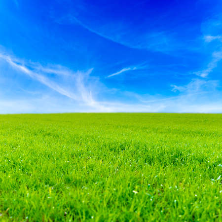 Green grass field and bright blue sky. photo