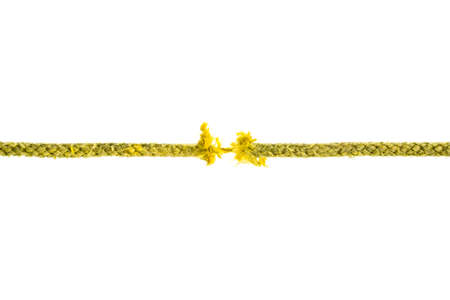 Torn yellow rope on white background. photo