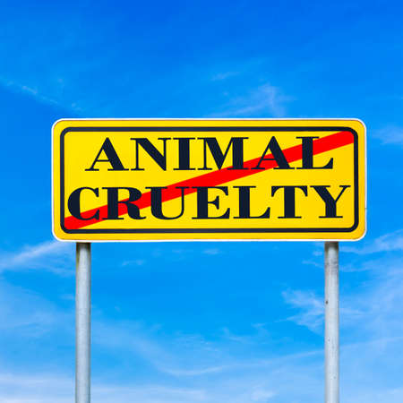 animal cruelty: Animal cruelty written on yellow street sign and crossed off. Stop animal cruelty concept.