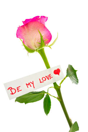 Be My Love label with a romantic red heart tied to a single pink rose as a sentimental gift for a loved one or sweetheart on Valentines Day, isolated on white Stock Photo