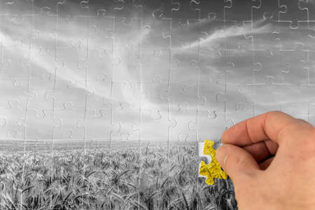 Landscape jigsaw puzzle of a greyscale wheat field with a male hand placing the last piece of the puzzle in vibrant colour depicting problem solving in agriculture and sustainability in nature. photo