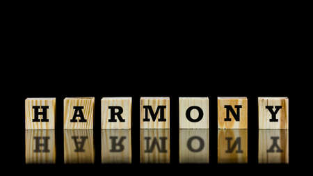 self awareness: The word - Harmony - on wooden cubes beautifully reflected on a dark surface below against a black background with copyspace