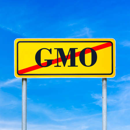 Yellow traffic sign prohibiting genetically modified organism with the word - GMO - crossed through in red against a clear sunny blue sky in a conceptual image.