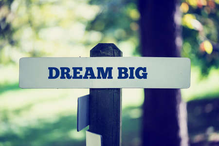 Old rustic signpost with the phrase Dream big, outdoors in sunny woodland with a faded vintage or retro effect to the image.