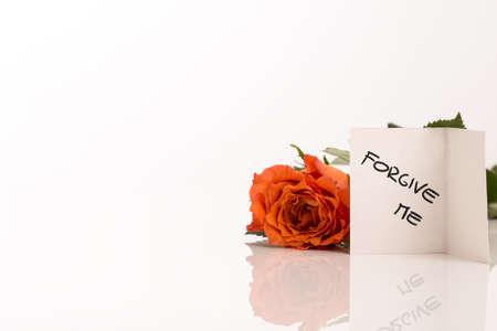 perdonar: Peque�o blanco Forgive Me Tarjeta Junto Fresh Rose Flor naranja con copia espacio en el lado izquierdo.