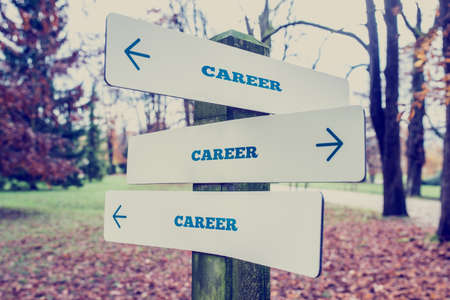 Rural signboard with the word Career with arrows pointing in three directions conceptual of there being many choices different career and diversity.
