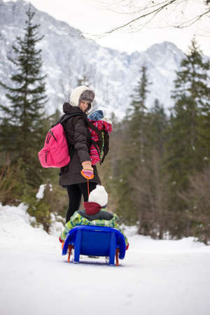 sledging people: Young mother pulling her small child through winter snow on a toboggan turning to check that the child is safe in a mountain pine forest.