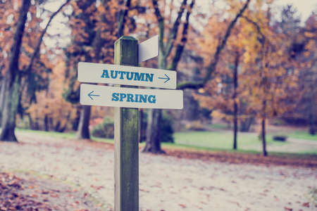 two way: Rustic wooden sign in an autumn park with the words Autumn - Spring with arrows pointing in opposite directions in a conceptual image. Retro toned image. Stock Photo