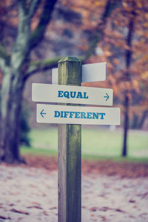 equivalent: Rustic wooden sign in an autumn park with the words Equal - Different offering a choice of attitude with arrows pointing in opposite directions in a conceptual image with a vintage style filter effect