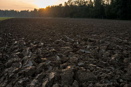 ploughed field: Newly ploughed field in spring time during sunset. Conceptual of farming and agriculture.