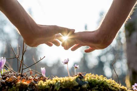 Здоровье: Закрыть Bare рука человек, охватывающих мелкие цветы в саду с Sunlight между пальцами.