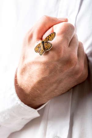 elementos de protecci�n personal: Hombre con una mariposa con las alas abiertas en su pu�o cerrado que est� llevando a cabo en el pecho en una imagen conceptual, de cerca de la mano en la camisa blanca.