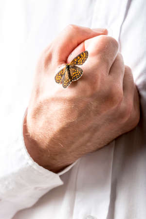 protection plan: Man with a butterfly with open wings on his clenched hand which he is holding to his chest in a conceptual image , close up of his hand on his white shirt.