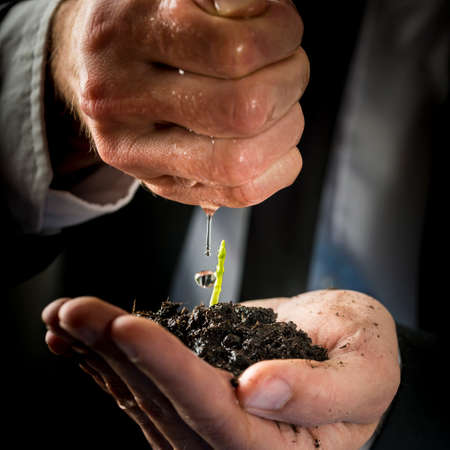 protection hands: Closeup of male hands in a formal suit nurturing and watering a young green sprout. Conceptual of business start up, environmental care and protection.