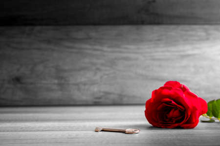 devotions: Beautiful blooming  red rose and key on wooden table - selective colour of the rose in a greyscale image conceptual of love, romance, valentines day and devotion. Copyspace on the left. Stock Photo