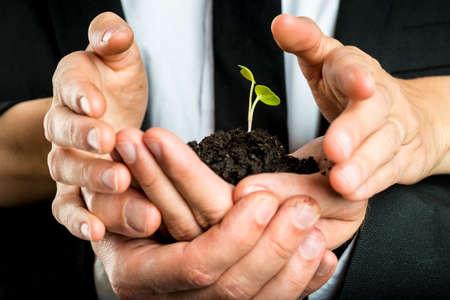vision futuro: Socios de negocios masculinos y femeninos nutrir una nueva planta unida para proteger una frágil brote verde cultivado en suelo fértil, el concepto de la ecología y la puesta en marcha de negocios. Foto de archivo