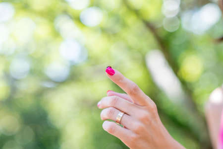 ladybird: Married woman pointing a finger displaying a red spotted ladybird on top outdoors against greenery, close up view of her hand with copyspace. Stock Photo
