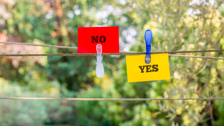 clipped: Conceptual Red and Yellow Paper with Yes and No Messages Clipped on a String Against Fuzzy Greenery Background.
