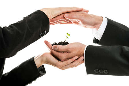 Male and female business hands holding and protecting new green sprout in a pinch of soil. Conceptual of environmental awareness and business start up. Isolated over white background.