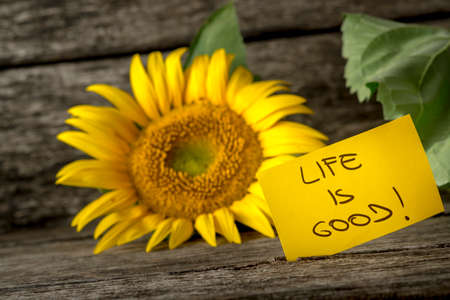 good attitude: Yellow card with a Life is good message leaning on a beautiful blooming sunflower over textured rustic background. Stock Photo