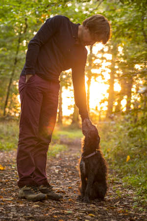 pat down: Man and his dog enjoying nature as he stands bending down to pet it in a glade in the woods backlit by the warm glow of the early morning sun.
