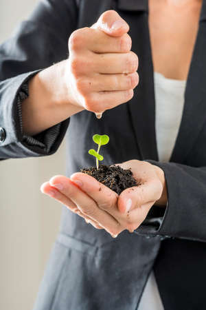 conservation: Closeup of woman in elegant suit holding a green sprout growing from a fertile soil watering it with the other hand. Conceptual of business vision and start up or nature conservation and awareness. Stock Photo