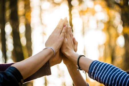 join the team: Closeup view of four people joining their hands together high up in the air outside in a forested area. Stock Photo