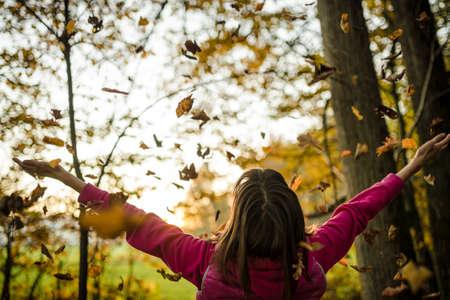 prosperidad: Vista desde atrás de una mujer joven de pie en bosque de otoño con los brazos extendidos, mientras que las hojas están cayendo en ella y el sol de la tarde ilumina la atmósfera. Foto de archivo
