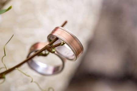 anillos de boda: Primer de los anillos de boda de la novia y el novio que cuelgan de una ramita. Conceptual de la boda y de compromiso. Foto de archivo