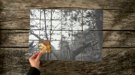 hands   free: Greyscale image assembled of individual cards of young woman with her arms spread wide standing in a forest with male hand placing the last piece of the puzzle in vibrant colour. Stock Photo