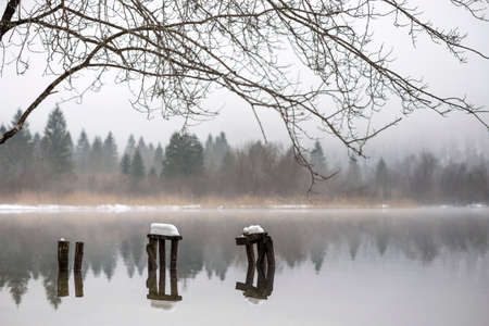 steamy: Three old decaying piers covered with snow in steamy quiet lake surrounded by evergreen trees in winter.
