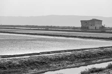 Abandoned old salt pan house at Secovlje Salina Nature Park situated in the southwestern part of Slovenia, monochrome image. Imagens