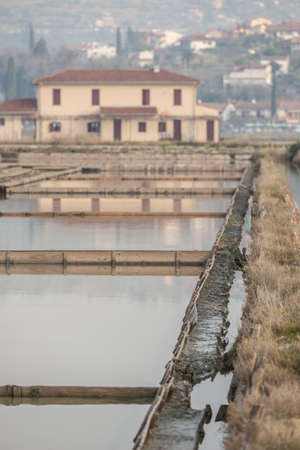 Secovlje Saltpans Nature Park in Slovenia. Stock Photo