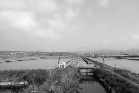 Greyscale image of Secovlje Saltpans Natural Park in Slovenia.
