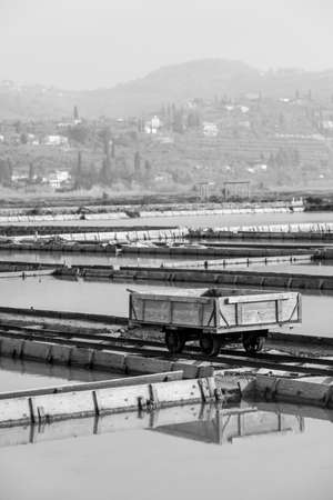 Monochrome image of the transport trolley in Natural Park Secovlje - Salt Pans in Slovenia, Europe.