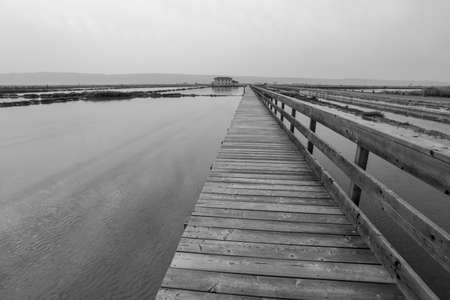 Greyscale image of Secovlje Saltpans Natural Park is a natural park in southwestern Slovenia. Imagens