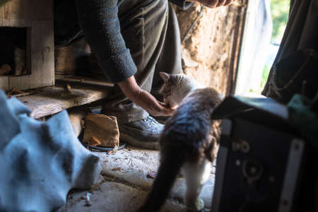 Lower body of person sat in rundown home feeding cat by hand. 版權商用圖片