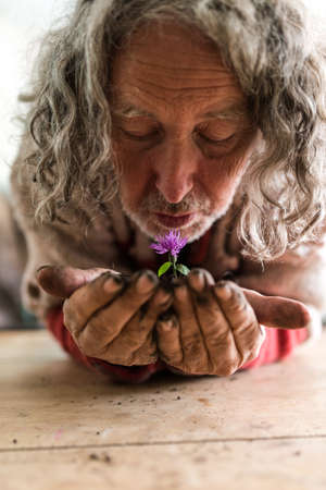 Old man holding a dainty purple spring flower in a mound of dark soil in his hands as he bends forwards.