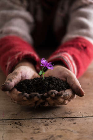 Man with dirty hands holding a purple flower in a soil in his hands, suitable for spirituality concepts.