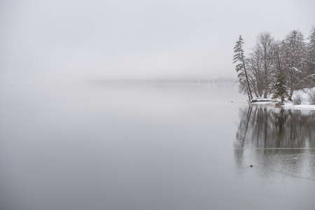 Winter lake covered in fog with a little piece of shore and trees on the right.