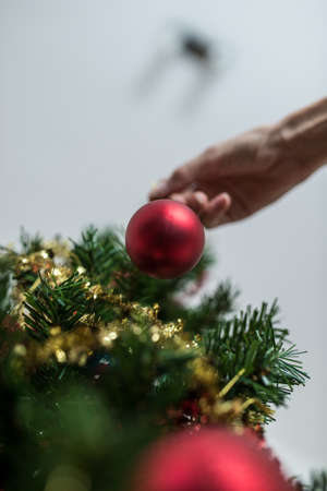 View from below of a female hand hanging red Christmas bauble on a holiday tree. Stock Photo