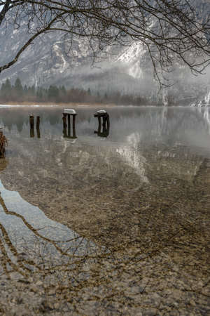 Still water of cold winter lake Bohinj framed with tree branches on the top part of an image.