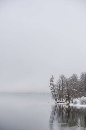 Calm winter lake with snow covered shore and evergreen trees. Imagens