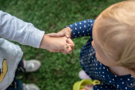 Top view of toddler boy showing his little sister a tiny snail on his hand.